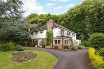 4 bedroom Detached home for sale in Northern Heights...