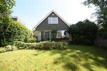 Detached home for sale in Cowley Lane, Chapeltown