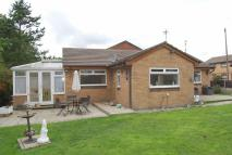 Detached Bungalow for sale in Greenbrook Close...