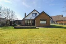 3 bed Detached Bungalow in Mafeking Avenue, Bury...