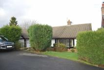 3 bedroom Detached Bungalow for sale in Leigh Close, Tottington...