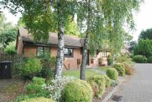 Detached Bungalow for sale in The Croft, Bury...