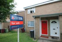 Flat in Kestrel Drive, Eckington