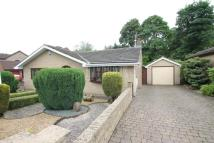 3 bed Bungalow for sale in Limekilns, North Anston