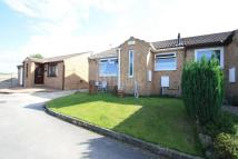 Bungalow for sale in Helliwell Croft, Deepcar...