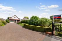 4 bed Bungalow in Braithwell Road...
