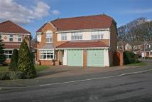 Detached home for sale in Greylag Crescent...