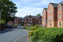 Flat to rent in Brookfield Apartments...