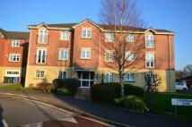 Ground Flat to rent in Feversham Close, Eccles...