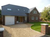 Sandy Lane Bungalow to rent