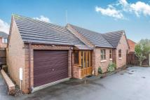 Detached Bungalow for sale in Hanbury Road...