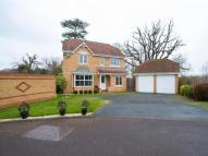 Detached property in Kestrel Crescent...