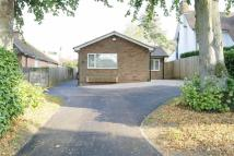 Detached Bungalow for sale in Overslade Lane, Rugby...