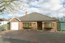 4 bedroom Detached Bungalow in Bowen Road, Rugby...