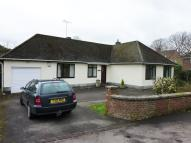 Lansdown Bungalow to rent