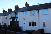 2 bed Terraced property to rent in Woodbine Cottages...