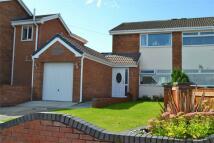 semi detached property for sale in Berwyn Close, Buckley...