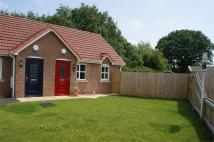 Semi-Detached Bungalow in 9 St Davids Court, Ewloe...