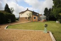 Detached property in Mold Road, Mynydd Isa...