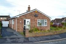 Detached Bungalow to rent in St Mellors Road, Buckley...