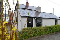 Detached Bungalow for sale in Church Road, Buckley...