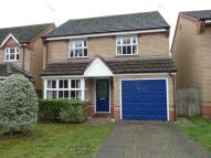 Detached home in Buttercup Close, Thetford