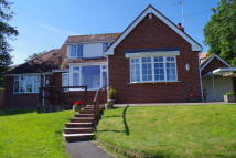 Detached Bungalow in Limers Lane, Northam...