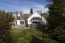 4 bed Detached Bungalow for sale in Fairfield Gisburn Road...