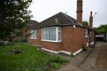 3 bed Detached Bungalow for sale in Hawkwell Estate...