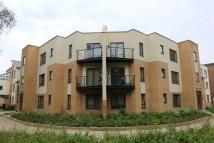 2 bed Apartment in Lexham Road, Ashland...