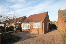 Bungalow for sale in Willson Avenue, Derby