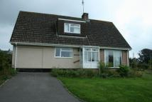 Detached Bungalow in West Quantoxhead