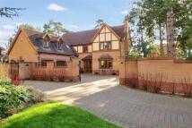 Detached home for sale in Limetree Walk, Heckington