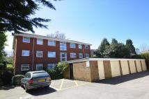 Branksome Flat to rent