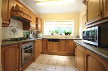 Bungalow in Ryall Road, Holly Green...
