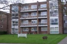 Flat to rent in 24 Foxgrove Road...