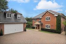 Detached home in Blytheswood Sheethanger...