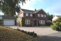 4 bed Detached property to rent in Oakwood, Berkhamsted, HP4
