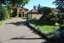 Detached property in Shootersway Lane...