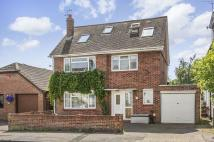 5 bedroom Detached house in Beltinge