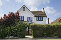 3 bed Detached house for sale in Beltinge