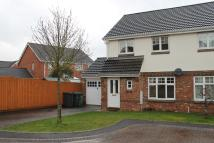 3 bedroom semi detached house to rent in Boulton Close, Westbury...