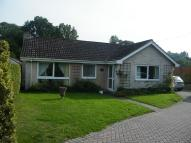3 bed Detached Bungalow to rent in Folly Lane, Warminster...