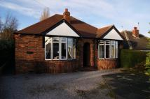 2 bed Detached Bungalow in Queens Drive, Ossett...