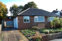 Semi-Detached Bungalow to rent in Woolgreaves Croft...