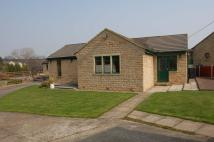 Detached Bungalow for sale in Lodge Farm Close...