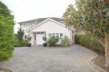 Detached house for sale in Burges Road, Thorpe Bay...
