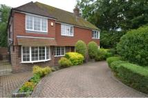 Detached property to rent in Woodland Avenue...
