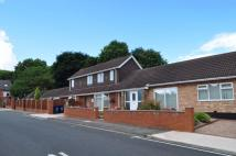 Detached Bungalow for sale in BOSWORTH GARDENS NORTH...