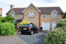 Detached house for sale in HALLEYPIKE CLOSE HAYDON...
